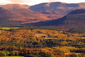 Rothiemurchus-and-Cairngorms-in-Autumn